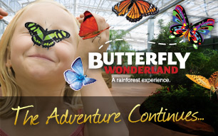 The Adventure Continues at Butterfly Wonderland!